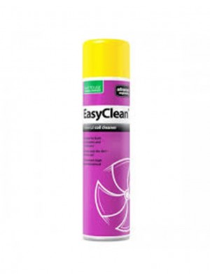 EasyClean (aérosol de 600 ml) - Advanced